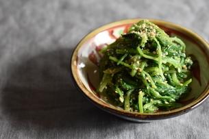 壬生菜の胡麻和えの写真素材 [FYI04834017]