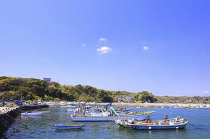 神奈川県 金田漁港の写真素材 [FYI04834063]