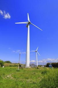 神奈川県 宮川公園の風力発電の写真素材 [FYI04834138]