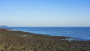 JR豊後豊岡駅付近の海岸から夕方の別府湾の水平線の写真素材 [FYI04834222]
