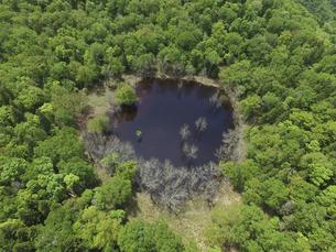 空撮・初夏のポンホロ沼(北海道・知床)の写真素材 [FYI04834323]