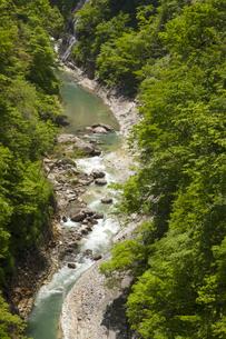 新緑の小安峡の写真素材 [FYI04834474]