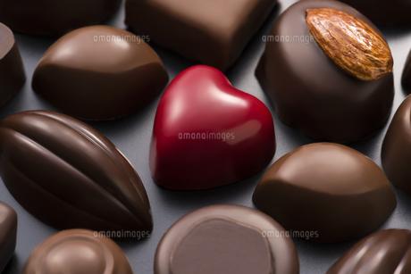 チョコレートの集合の写真素材 [FYI04834516]