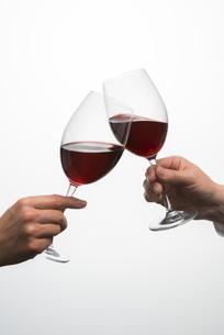 ワインで乾杯する男女の写真素材 [FYI04834621]