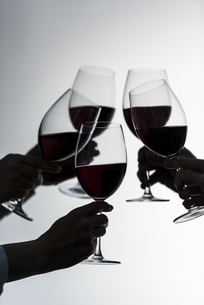 ワインで乾杯する男女の写真素材 [FYI04834623]