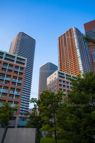 武蔵小杉のタワーマンション群の写真素材 [FYI04834781]