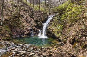 安達太良山 魚止滝の写真素材 [FYI04834859]