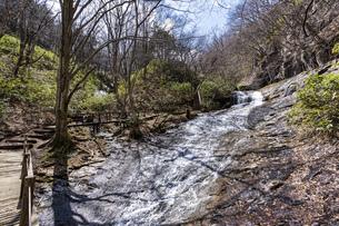 安達太良山 昇龍の滝の写真素材 [FYI04834862]