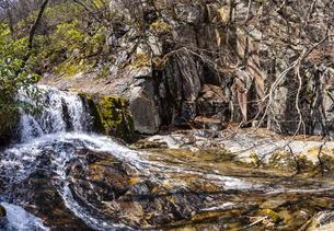 安達太良山 昇龍の滝の写真素材 [FYI04834868]