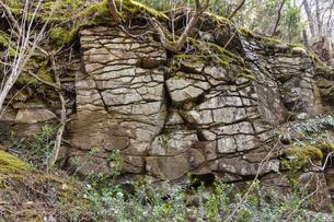 ひび割れた岩の写真素材 [FYI04834874]