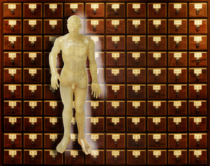 漢方用人体の写真素材 [FYI04835263]