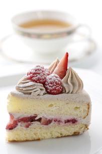 ショートケーキの写真素材 [FYI04835293]