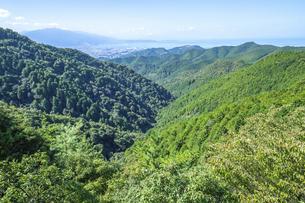 県道9号線より見る四国中央市の山並み(横構図)の写真素材 [FYI04835312]