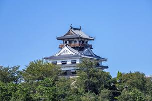 川之江城(横構図)の写真素材 [FYI04835319]