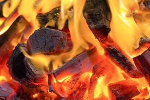 たき火の写真素材 [FYI04835429]