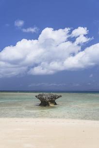 波照間島ニシ浜2021の写真素材 [FYI04835500]
