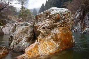 【地学教材】12月 足尾山地大芦川のタイガーロック(虎岩)の写真素材 [FYI04835560]