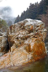 【地学教材】12月 足尾山地大芦川のタイガーロック(虎岩)の写真素材 [FYI04835564]
