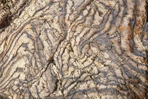 【地学教材】12月 褶曲構造 -足尾山地のチャート層の例の写真素材 [FYI04835570]