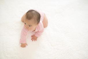 ハイハイする赤ちゃんの写真素材 [FYI04835868]