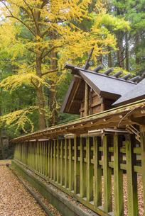 秋の天岩戸神社 東本宮の写真素材 [FYI04836026]