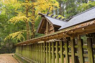 秋の天岩戸神社 東本宮の写真素材 [FYI04836028]