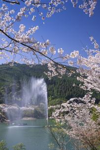 桜咲く市房ダムの写真素材 [FYI04836038]