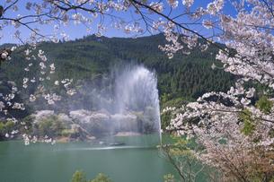 桜咲く市房ダムの写真素材 [FYI04836039]