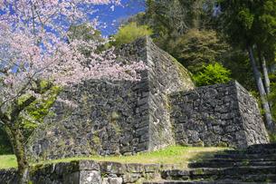 春の人吉城跡の写真素材 [FYI04836040]