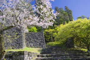 春の人吉城跡の写真素材 [FYI04836041]