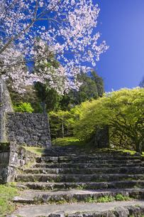 春の人吉城跡の写真素材 [FYI04836042]