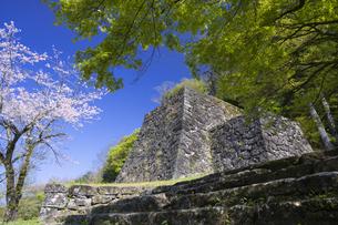 春の人吉城跡の写真素材 [FYI04836043]