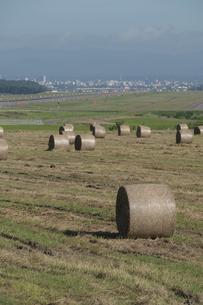 牧草ロールが並ぶ草原と飛行場の写真素材 [FYI04836172]