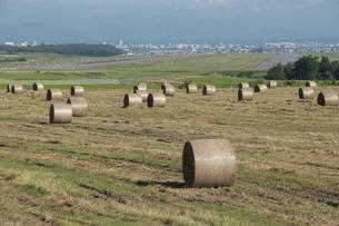 牧草ロールが並ぶ草原と飛行場の写真素材 [FYI04836173]