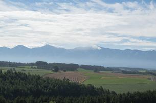 夏の畑作地帯と山並み 十勝岳連の写真素材 [FYI04836174]