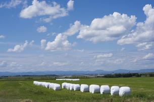 牧草ロールのある風景の写真素材 [FYI04836184]