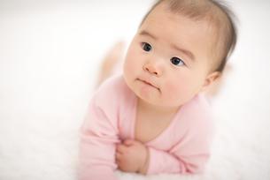 四つん這いの赤ちゃんの写真素材 [FYI04836372]
