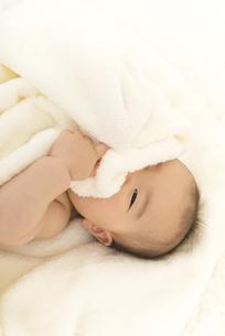 タオルケットに包まれる赤ちゃんの写真素材 [FYI04836377]