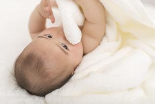 タオルケットに包まれる赤ちゃんの写真素材 [FYI04836383]