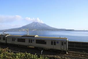 鹿児島本線の電車と錦江湾に浮かぶ噴煙を上げる桜島の写真素材 [FYI04836421]