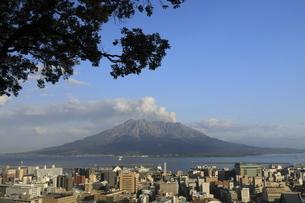 城山からの噴煙を上げる桜島と鹿児島の街の眺めの写真素材 [FYI04836422]
