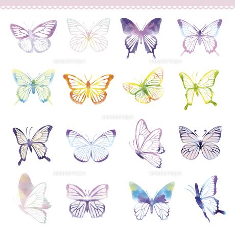 蝶々のイラストセットのイラスト素材 [FYI04836582]