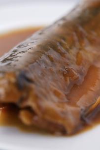鯖の味噌煮の写真素材 [FYI04837246]