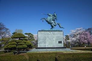 桜の霞城公園の写真素材 [FYI04837292]