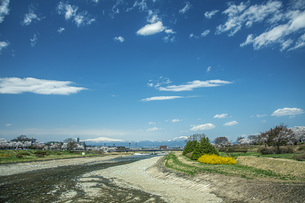春の馬見ヶ崎川の写真素材 [FYI04837301]