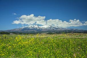 春の鳥海山の写真素材 [FYI04837332]