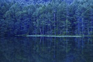 早朝の御射鹿池の写真素材 [FYI04837359]