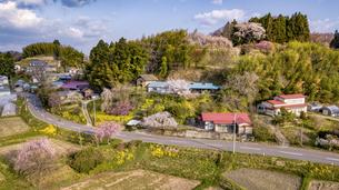 春の福島県三春町の写真素材 [FYI04837465]