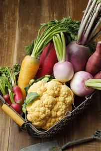 野菜の写真素材 [FYI04837534]