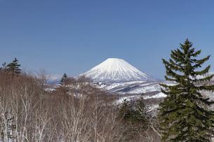 北海道 初春の羊蹄山の風景の写真素材 [FYI04837779]